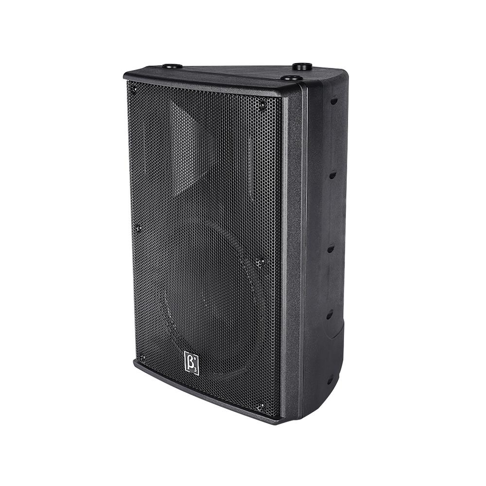 10英寸防水全天候音箱