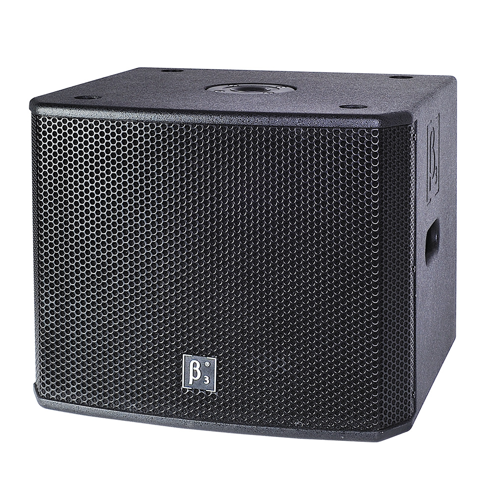 内置分频器双12英寸低频扬声器系统